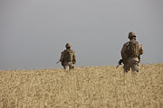 Foot Patrol Photos - U.s. Marines Patrol A Wadi Near Kunduz by Terry Moore