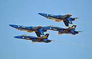 Eleu  Tabares - U.S. Navy Blue Angels