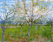 Religious Artist Paintings - Van Gogh The Pink Orchard by Vincent van Gogh