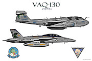 Fa-18 Posters - VAQ-130 Prowler and Growler Poster by Clay Greunke
