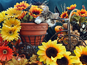 Kitteh Prints - Venus - Cute Kitten in Bicycle Flower Planter - Kitty Cat in Sunflowers and Gerberas Print by Chantal PhotoPix