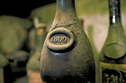 Wine Cellar Photos - Very Old Wine by Carl Purcell