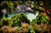 Corfu Prints - View From The Terrace - Paleokastritsa  Print by Lois Bryan