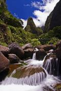 Best Sellers - View Of Iao Needle by Ron Dahlquist - Printscapes