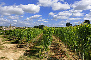 Viticulture Framed Prints - Village and vineyard of Saint-Emilion. Gironde. France Framed Print by Bernard Jaubert
