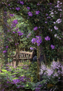 Original Oil  Doug Kreuger Paintings - Violet Garden Respite by Doug Kreuger