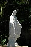 Miami Digital Art Originals - Virgin Mary by Rob Hans