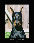 Dobe Framed Prints - Voodoo Framed Print by Rita Kay Adams