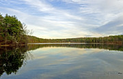 Concord Metal Prints - Walden Pond Metal Print by Frank Winters