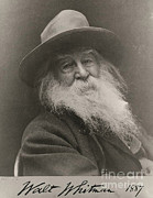 Walt Whitman Metal Prints - Walt Whitman, American Poet Metal Print by Photo Researchers