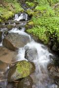 Mt Hood National Forest Prints - Water Cascading Over Rocks, Mount Hood Print by Craig Tuttle