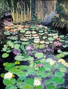 Clifton Painting Posters - Water lily Poster by Sandy Clifton