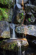 Tranquil Pond Metal Prints - Waterfall Metal Print by Carlos Caetano