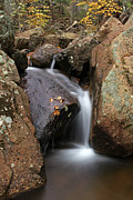 Leaf Prints - Waterfall In Acadia National Park Print by Juergen Roth