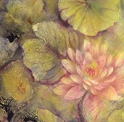 Waterlilies Mixed Media Posters - Waterlily at Sunset Poster by Kathleen Pio