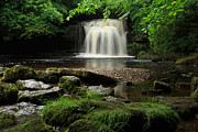 Burton Framed Prints - West Burton Falls in Wensleydale Framed Print by Louise Heusinkveld