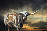 Longhorn Metal Prints - West of El Segundo Metal Print by Robert Anschutz