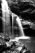 Birch River Prints - West Virginia Waterfall  Print by Thomas R Fletcher