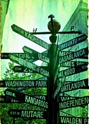 Buildings Art Posters - Where to go Poster by Cathie Tyler
