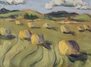 Cottonwood Paintings - Whimsical Hay Bales by Zanobia Shalks