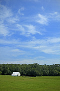Natchez Trace Framed Prints - White Barn Blue Sky No. 2 Framed Print by Phil Brown