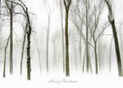 Christmas Card Digital Art Metal Prints - White Christmas Metal Print by Jessica Jenney