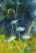Jungle Drawings Originals - White Flowers 2 by Anil Nene