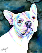 White Dog Originals - White French Bulldog by Christy  Freeman