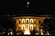 White House Photos - White House by Mitch Cat