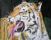 Wild Cats Framed Prints - Wild Thing Framed Print by Judy Kay