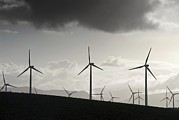 Silhouetted Posters - Wind Turbines Poster by Chris Knapton