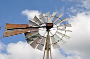 Windmill Print by Teresa Blanton