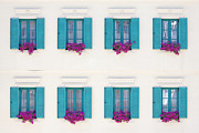 Karlovy Framed Prints - Windows and Window Boxes Framed Print by Jeremy Woodhouse
