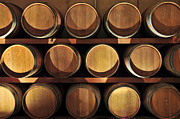 Stacks Posters - Wine barrels Poster by Elena Elisseeva