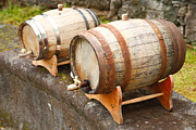 Viticulture Framed Prints - Wine barrels Framed Print by Gaspar Avila