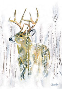 Corn Stalks Posters - Winter Deer Poster by Antony Galbraith