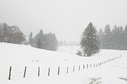 Lots Of Snow Prints - Winter landscape Print by Matthias Hauser