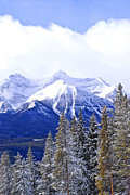 Canadian Nature Scenery Prints - Winter mountains Print by Elena Elisseeva