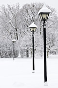 Lightposts Prints - Winter park Print by Elena Elisseeva