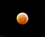 Winter Solstice Lunar Eclipse 2010 Print by Kevin Munro