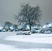Snowy Night Night Photo Prints - Winter Print by Svetlana Sewell