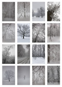 Wintry Photo Prints - Winter time Print by Gabriela Insuratelu