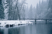 Snow Scenes Prints - Winter View Of The Merced River Print by Marc Moritsch