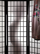 Voyeur Framed Prints - Woman Behind Shoji Screen Framed Print by Oleksiy Maksymenko