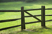 Grassland Posters - Wood fence Poster by Tony Cordoza