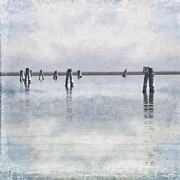 wood piles in the lagoon of Venice Print by Joana Kruse