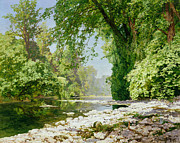 Woods; Shadows; Trees Paintings - Wooded riverscape by Leopold Rolhaug