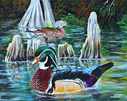 Waterfowl Paintings - Woodies on the Bayou by Karl Wagner