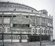 Chicago Baseball Drawings - Wrigley Field by Juliana Dube