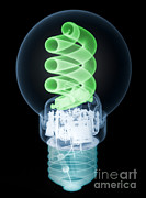 Energy Efficient Prints - X-ray Of Energy Efficient Light Print by Ted Kinsman